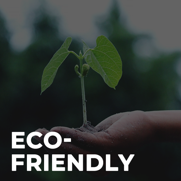 Shop Eco-Friendly